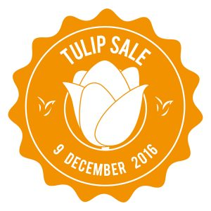 VRIJDAG 9 DECEMBER TULIP HOLSTEIN SALE 2016