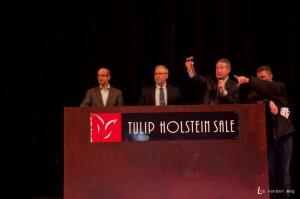 Mondiale toppers op Tulip Sale!