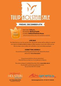 Tulip Holstein Sale Friday December 6!