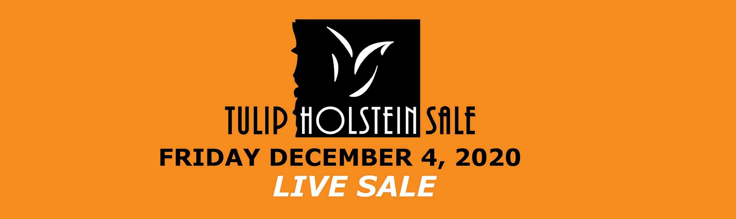 Tulip Sale 2020 live sale