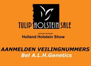 Tulip Sale wordt online LIVE gehouden!