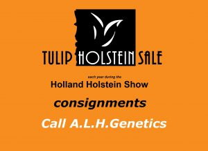 Tulip Sale will be online LIVE sale!